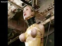 Pretty newcomer tightly secured in her first bdsm vid
