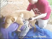 Classic hardcore animal sex movie featuring an amateur lifting her skirt for sex with a dog