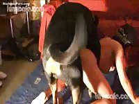 Leggy shy housewife wears a mask while getting her pussy soiled by a K9