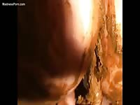 Stunning home video of a married woman pooping then coating her fantastic ass with the scat