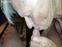 Granny with gray hair sucks a small dick
