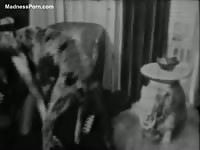 Classic black and white zoophilia movie featuring a MILF and a K9