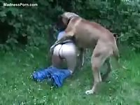 Petite young whore gets her cunt slammed by a dog while outdoors