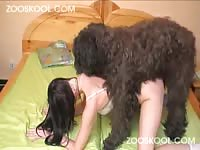 Endowed dog goes balls deep in bestiality sex loving coed hussy in this bestiality movie