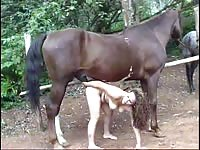 Big breasted animal sex lover blowing horse cock for a massive warm load of cum to enjoy