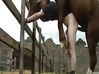 Dick addicted skinny twink stands tall while taking a brutal anal smashing from a horse here