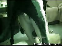 Older tramp getting her shaved hole screwed by an enormous K9 in this zoo sex movie