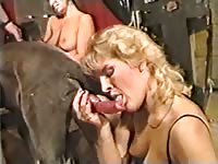 Husband and wife invite their horny friend along for a group bestiality sex adventure here
