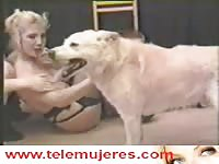Classic animal fucking adventure features blonde married tramp and brunette friend with dog