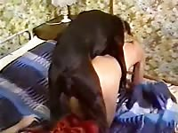 Amazing unseen married hussy getting screwed by a K9 in this thrilling animal fetish footage