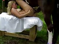 Sensational amateur screwing video features college babe taking cock from a massive horse