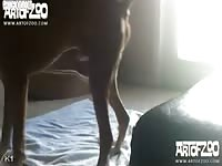 Art of Zoo - Small girl with long legs bends over and takes a fantastic pussy pounding from her animal