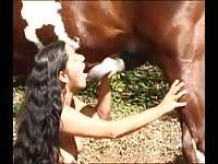 Brunette amateur college-aged hussy showing off her cock sucking abilities on a large horse