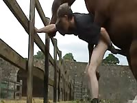 Petite guy stands up straight and takes an anal smashing from a horse in this bestiality movie