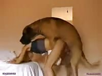 Coed hussy getting her sweet fuck hole humped by an endowed K9 in this beast sex video