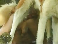 Guy with an addiction to feeling cock in his asshole turns to bestiality sex with his dog for fun