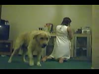 Cock needing cougar gets her pussy screwed by a dog in this thrilling animal fetish movie