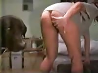 317 rusz russian bestiality 2018 zoo sex from moscow