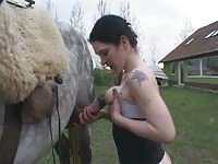 366 rusz russian bestiality 2018 zoo sex from moscow