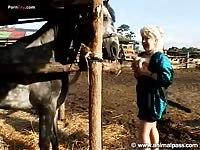Stallioncum com video 06