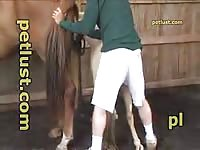 Young boy fuck mare