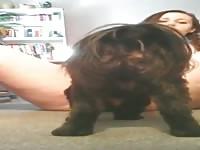 Nice doggy lick Petsex.com - Zoophilia Man