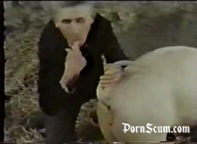 Animals men fucking Animal sex