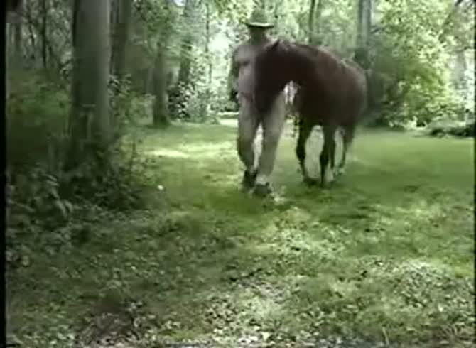 Male nackt horse blowjob beast zoophilie Animal Sex